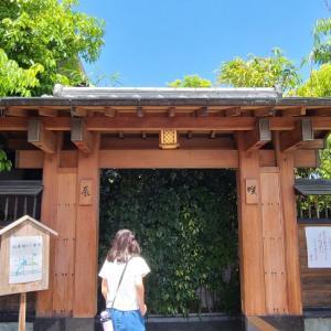 【わがまち西宮市紹介】そば辰さん~津門中央公園へ❕
