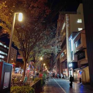 きらびやかな京都。