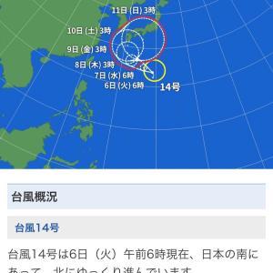 台風とトーナメントがかぶってます