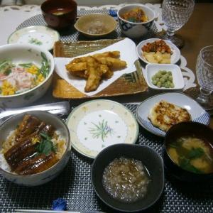 なんちゃって鰻丼vs本物うな丼 土用の丑の日の晩ご飯