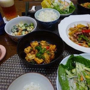 陳建一の麻婆豆腐で晩ご飯、4回目の緊急事態宣言‼‼