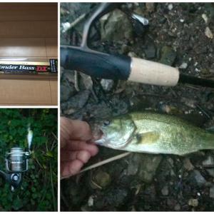 【釣り】新ロッド:プロマリンとバスゲット!しかもダイソールアーで釣れました!