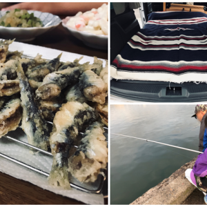 【釣り】那珂湊で初心者サビキ釣り!と車中泊レポ