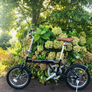 【キャンプギア?】アウトドア中の移動に便利!折り畳み自転車(鹿番長)を購入