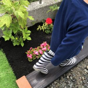 雑草にしか見えない花や植栽があるのでDIYで花壇を作る