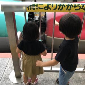 「こまち」と「はやぶさ」に乗って仙台に行きました ~仙台旅行①~