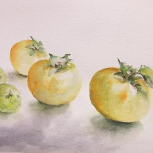 「スダチと柿」