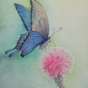 アートな生活〜水彩通信講座7「蝶」