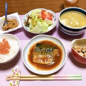 生協の鯖の味噌煮&鰤の漬け丼