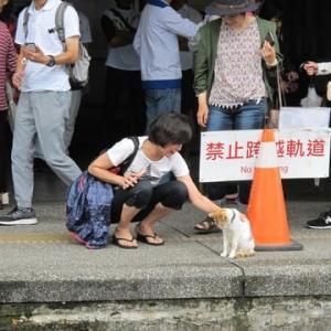 犬の気持ち、飼い主の気持ち。