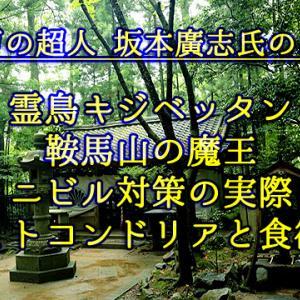 39:霊鳥キジベッタン・鞍馬山の魔王・ニビル対策の実際・ミトコンドリアと食欲・癌の治し方