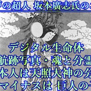 46:RHマイナスは 巨人の子孫・航跡写真・魂と分霊・日本人は天照大神の分霊・デジタル生命体