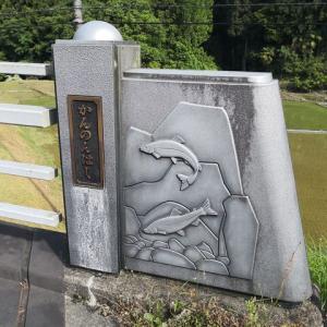 いよいよ貴志川の解禁 三桁釣りが出るかもな( ゚Д゚)
