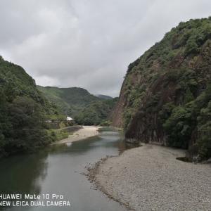 古座川でギャングに付きまとわれる( ゚Д゚)