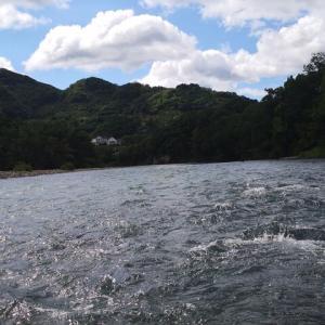 有田川ダム下の意外に大きなコッツンピー鮎( ゚Д゚)