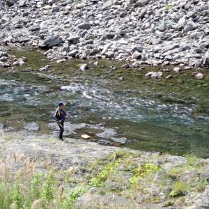 【有田川ダム上】本日5/18鮎釣りは可能です