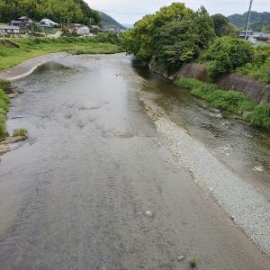 貴志川解禁70匹はこのポイントで釣れた!