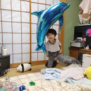 【7/5㊊】貴志川は早くも鮎釣り可能かー?