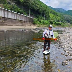 紀ノ川に釣りキチ三子効果か?