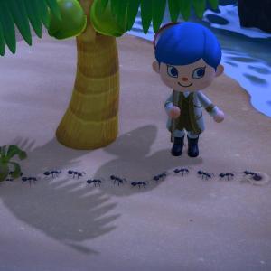 #あつまれどうぶつの森 プレイ日記その53:ようやくアリさん #どうぶつの森