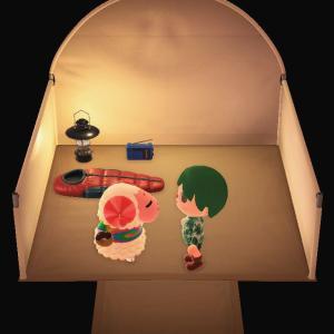 #あつまれどうぶつの森 プレイ日記その85:キャンプサイトに #ちゃちゃまる 現る! #どうぶつの森