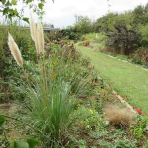 秋の花菜ガーデン散歩と「FIVE SEASONS」