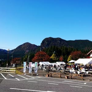 日本三百名山・倶留尊山のススキ
