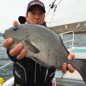 最近の釣果報告でーす🎵🎵🎵