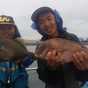 色々な魚種が釣れてます🎵🎵