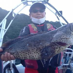 夜釣りでアラ系良く釣れてます✨🎵