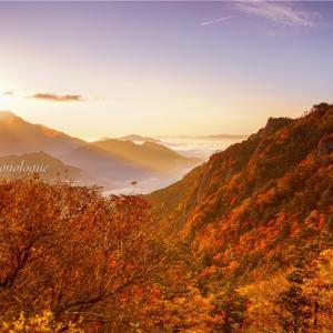 鮮やかに染まる山々