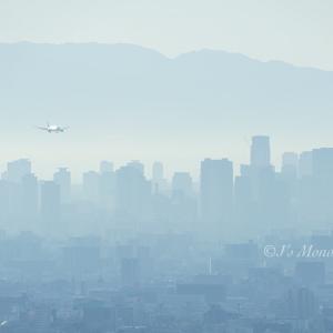 朝靄の上空で