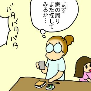 飼い猫がいなくなった日 その⑨~声がする!!!~
