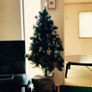 セリアのクリスマス飾りが可愛いくてオシャレ❗️
