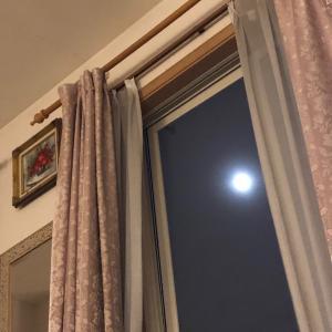 持続化給付金 着金報告続々✨ 窓辺で月光浴✨