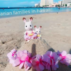 【シルバニアとお出かけ】in お正月hawaiiと、海辺のお船であそぼ★