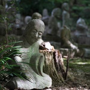 19.11.10:kajiさんと行く小城市の星巌寺2