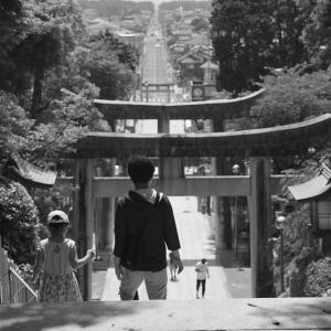 20.06.07:宮地嶽神社の花菖蒲7-完