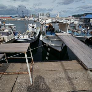 20.08.10:西福岡マリーナと姪浜漁港を漫ろ歩き5