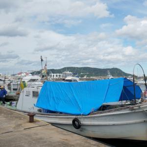 20.08.10:西福岡マリーナと姪浜漁港を漫ろ歩き6-完