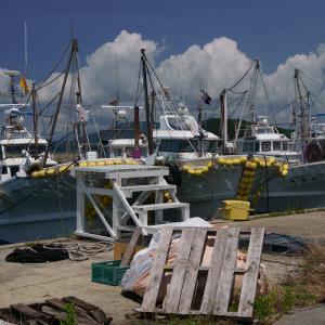 21.08.01:夏雲を撮りに漁港を訪ねて2