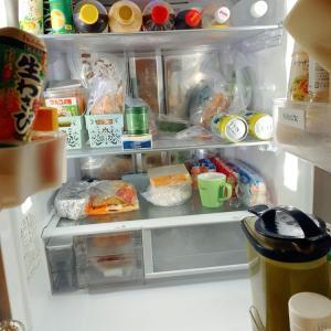 ● それゆけ! 冷蔵庫日誌・さん。●