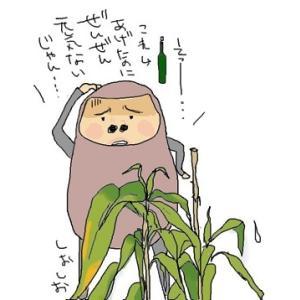 人にも植物にも、自然なものが一番いい