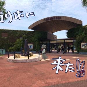 【ポケモンGO】西区・マリーナホップ&マリホ水族館
