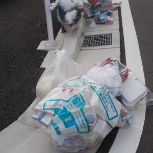 ゴミの不法投棄