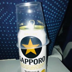 日本へ一時帰国2019(3)メキシコシティ発