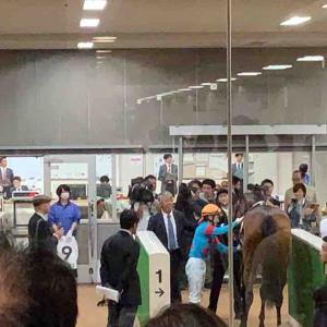 2019/10/19(土) 成績 29戦4勝 5800円→3080円 53%