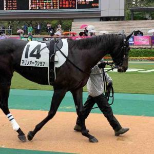 2021/9/20(月) 中央競馬 全レース印一覧