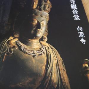 大好きな仏像巡りをすることが