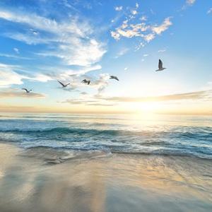 最近始めた、風の時代の流れを受けた「朝のルーティンワーク」
